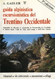 Cover of Guida alpinistica escursionistica del Trentino occidentale