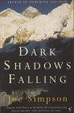 Cover of Dark Shadows Falling
