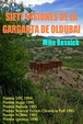 Cover of Siete visiones de la garganta de Olduvai