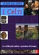 Cover of I celti