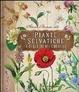 Cover of Atlante illustrato delle piante selvatiche e degli infusi curativi