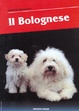 Cover of Il bolognese