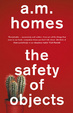 Cover of The Safety Of Objects