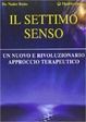Cover of Il settimo senso