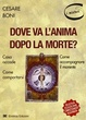 Cover of Dove va l'anima dopo la morte? Cosa accade, come comportarsi