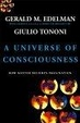 Cover of A Universe of Consciousness