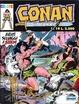 Cover of Conan il Barbaro Colore n. 19