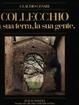 Cover of Collecchio