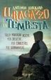 Cover of Il ragazzo e la tempesta
