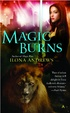 Cover of Magic Burns