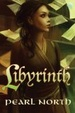 Cover of Libyrinth