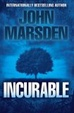 Cover of Incurable