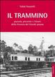 Cover of Il trammino. Passato, presente e futuro della ferrovia del litorale pisano