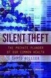 Cover of Silent Theft