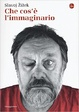 Cover of Che cos'è l'immaginario