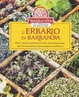 Cover of L' erbario di Barbanera