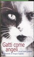 Cover of Gatti come angeli