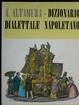 Cover of Dizionario dialettale napoletano