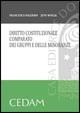 Cover of Diritto costituzionale comparato dei gruppi e delle minoranze