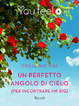Cover of Un perfetto angolo di cielo (per incontrare Mr Big)
