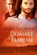 Cover of Domare le fiamme