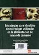 Cover of Estrategias para el cultivo de microalgas utilizadas en la alimentación de larvas de camarón