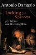 Cover of Looking for Spinoza