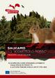 Cover of Salviamo lo scoiattolo rosso: progetto Life Ec-Square