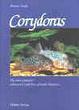 Cover of Corydoras