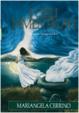 Cover of I cieli dimenticati