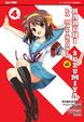 Cover of La malinconia di Haruhi Suzumiya 4
