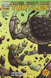 Cover of Teenage Mutant Ninja Turtles n. 25