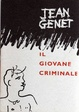 Cover of Il giovane criminale