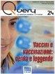 Cover of Query n. 24, anno VI, Inverno 2015