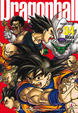 Cover of Dragon Ball Perfect Edition 34