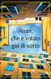 Cover of Amin, che è volato giù di sotto
