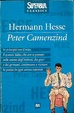 Cover of Peter Camenzind
