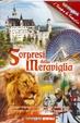 Cover of Sorpresi dalla meraviglia. Gli itinerari della storia incontrano i più importanti parchi tematici d'Italia