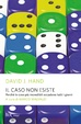 Cover of Il caso non esiste