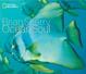 Cover of Ocean Soul