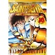 Cover of Saint Seiya Next Dimension vol. 10