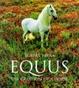 Cover of Equus