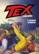 Cover of Tex collezione storica a colori speciale n. 8