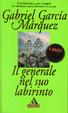Cover of Il generale nel suo labirinto