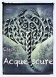 Cover of Acque scure