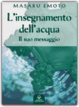 Cover of L' insegnamento dell'acqua