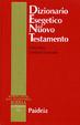 Cover of Dizionario esegetico del Nuovo Testamento