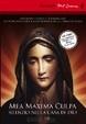 Cover of Mea maxima culpa: silenzio nella casa di Dio. DVD. Con libro