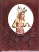 Cover of The Indians