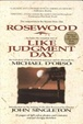 Cover of Like judgment day